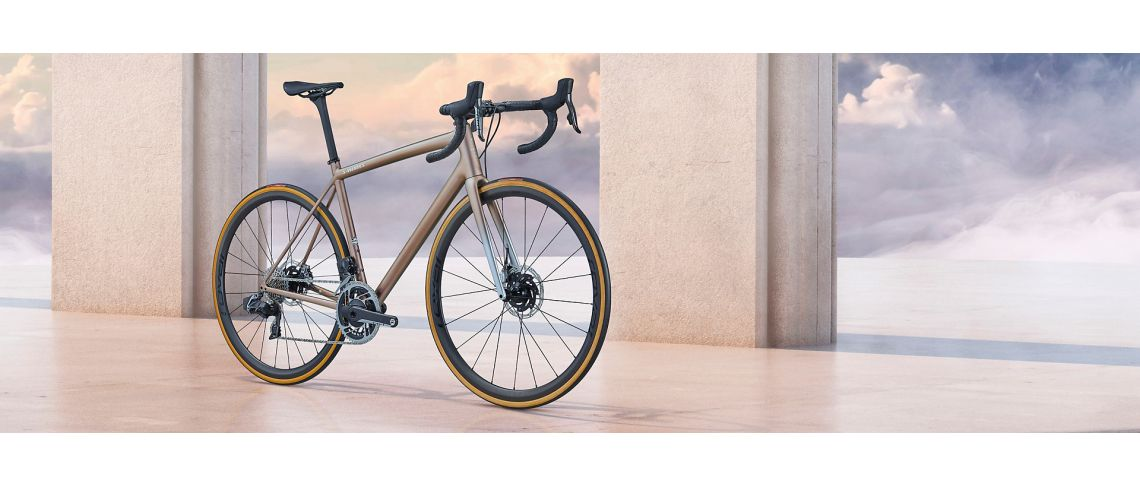 Aethos S-Works ETAP Specialized 2021 Satin Flake Silver/Red Gold Chameleon Tint/Brushed Chrome